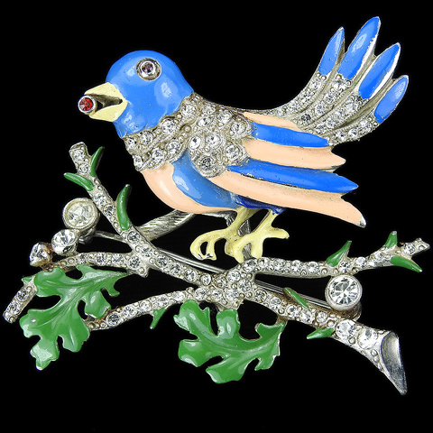 Staret Pave and Enamel Trembler Bird on a Branch Eating a Seed Pin